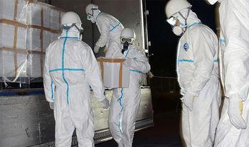 bird-flu-avian-influenza-duck-farm-thousands-culled-south-korea-china-news-latest-1269095.jpg
