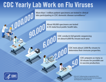 yearly-lab-work-infographic-large-e1525447996608.png